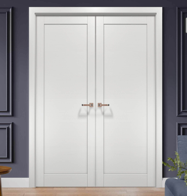 modern-double-doors.png